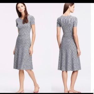 Ann Taylor Gauzy Fit and Flare Dress